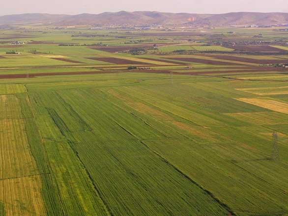 Arsa ve Arazi Değerleme